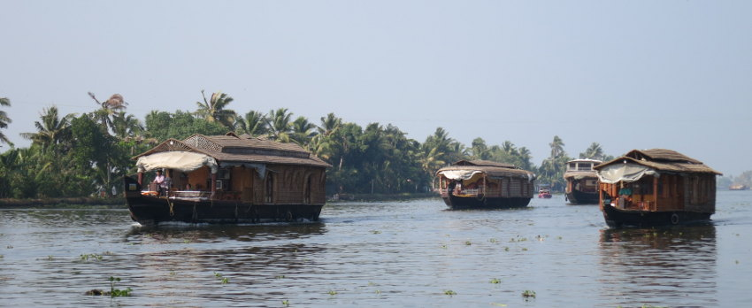 Cruising on Kerala's Backwaters