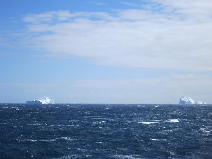 First Icebergs